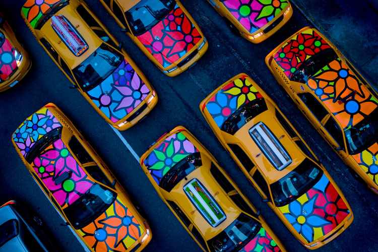Birds Eye View : Flower Taxis (Garden in Transit) : 47th and Broadway (Times Sq) NYC