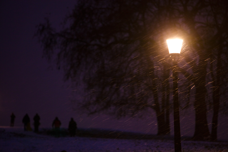 Snowing on Primrose Hill : North London : UK