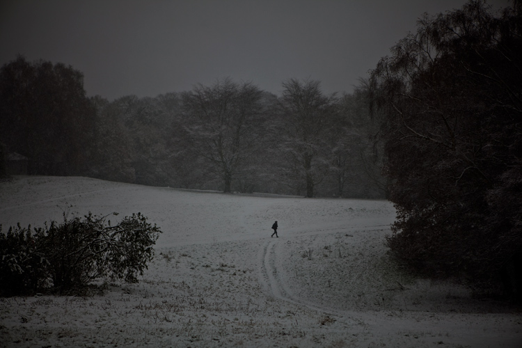 Jogging in the Snow : Hampstead Heath North London : UK