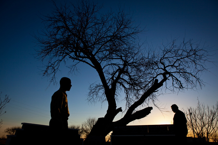 Memorial to the dead of the Waco Siege : The Oldest Tree : Mount Carmel : Texas
