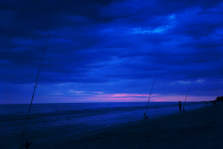 Night Fishing : Sanibel : Florida