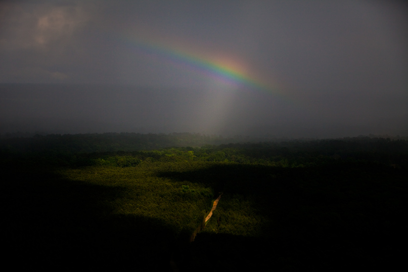 Rainbow Rising from Mississippi Forests : USA