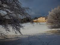 Kenwood House in the Snow (with Ringo) : Hampstead Heath : North London UK